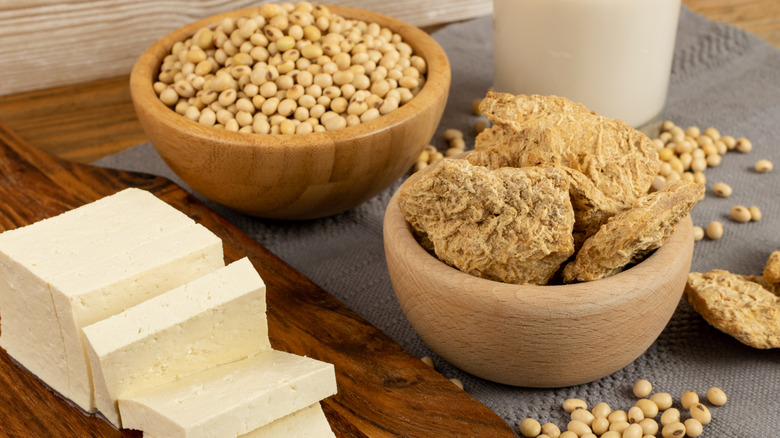 Soy food collection with dry soy meat, soybeans, soy milk and tofu
