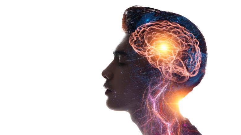 Image of man's brain