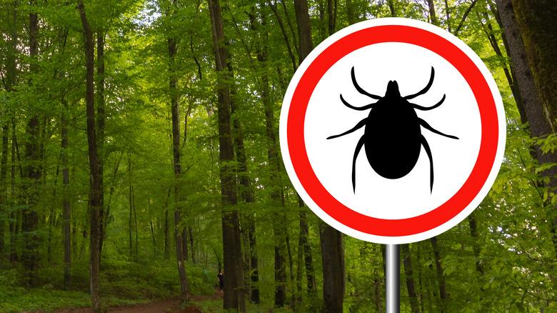Warning sign ticks in woods