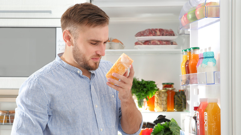 Man standing in front of open fridge smelling a hunk of stale cheese