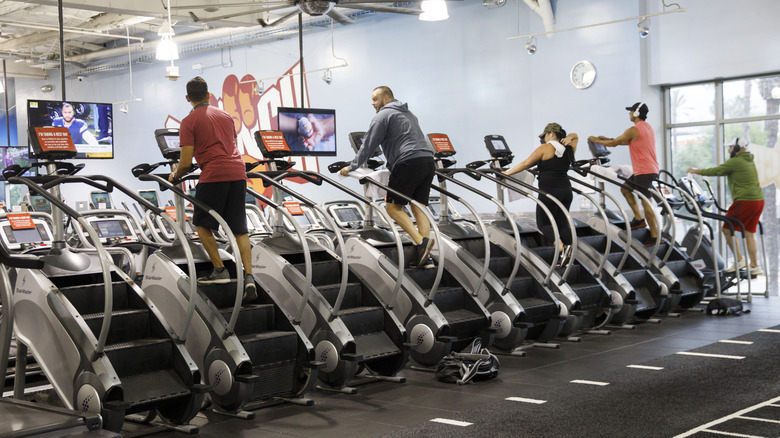 group of gym-goers on the line of StairMasters