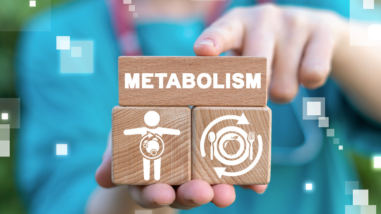 """Hands holding 3 wooden blocks with the word """"metabolism"""" and two accompanying images"""