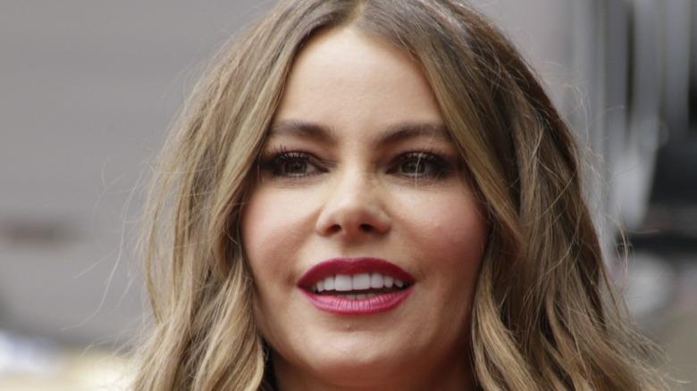 Close-up of Sofia Vergara