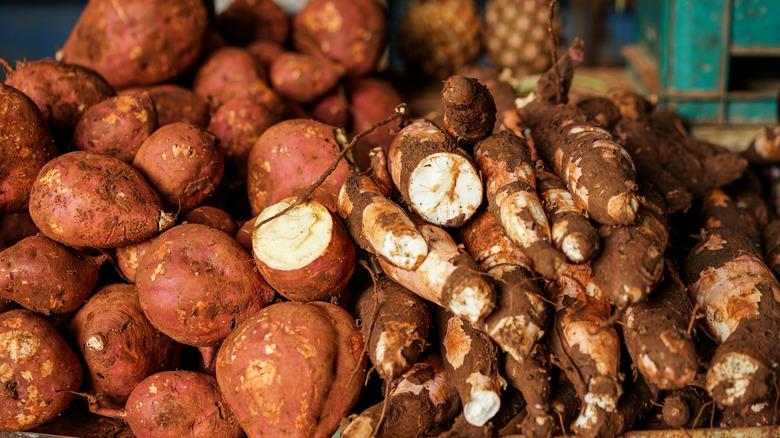 yams and sweet potatoes on display