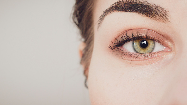 close up of womans eye and eye brow