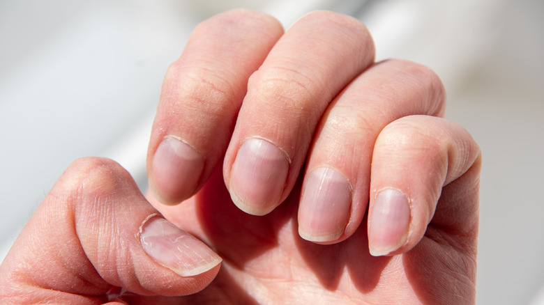 A close-up of a woman's nails