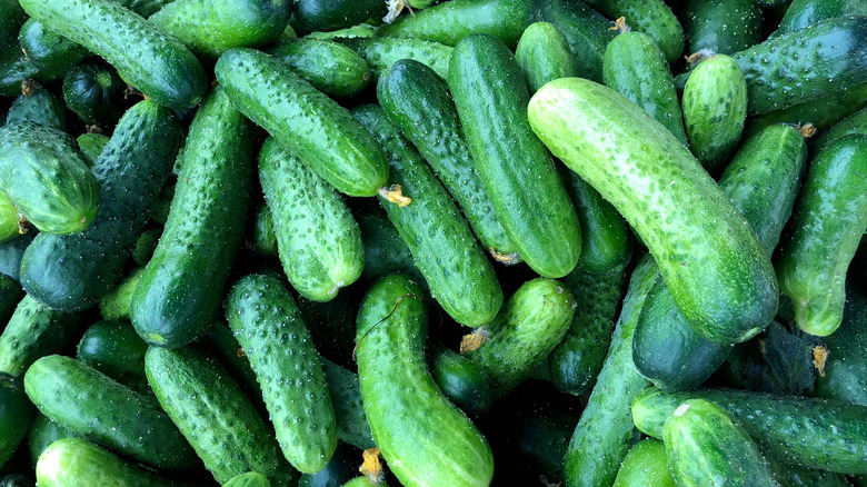 Close up image of pile of green cucumbers