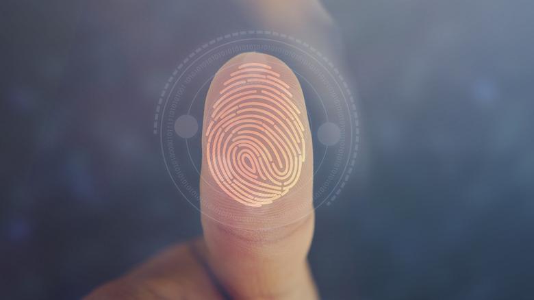 Thumb with a fingerprint