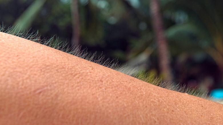 Close up of man with goosebumps