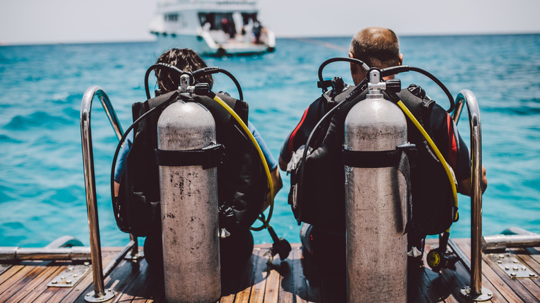 backside view of two scuba divers about to go into the ocean