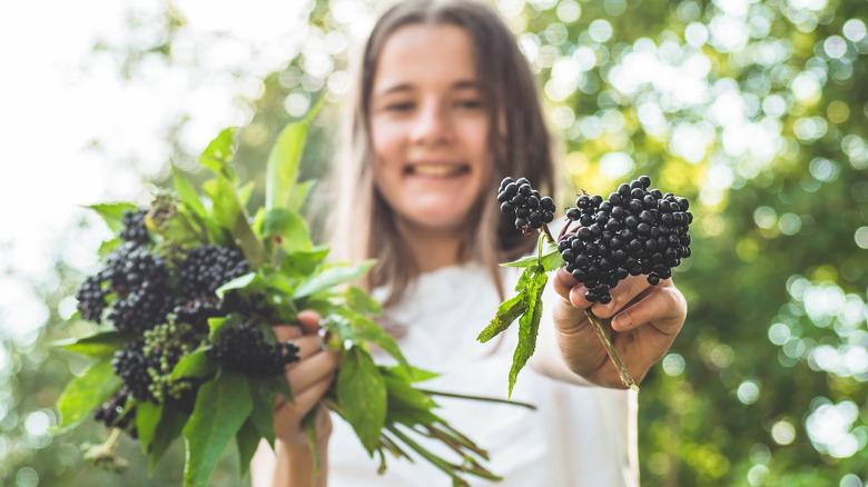 Young girl in garden. holding elderberry bunches