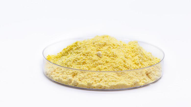 A petri dish full of powdered sulfur