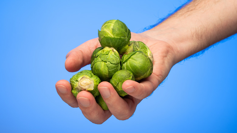 man holds brussels sprouts