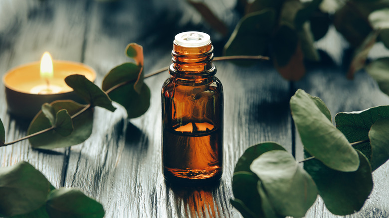 A bottle of eucalyptus oil on a wooden table