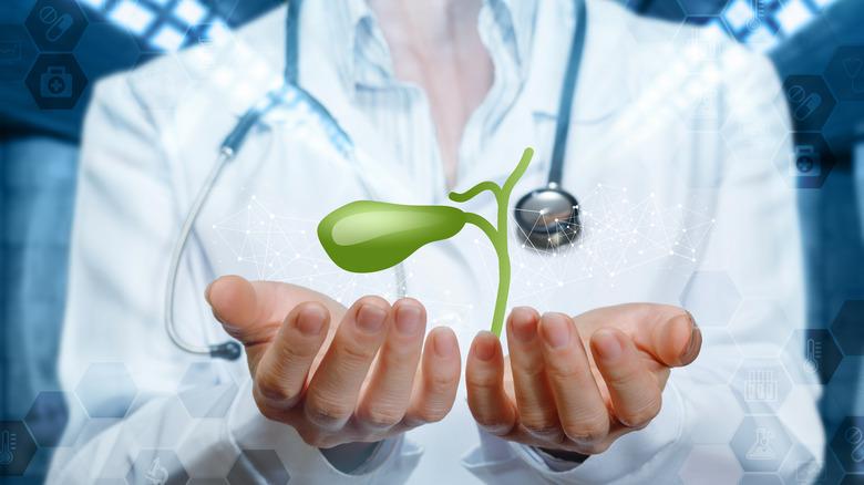 Doctor cupping symbolic gallbladder