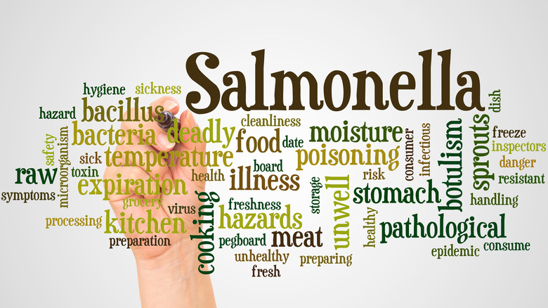 salmonella spelled out with other words