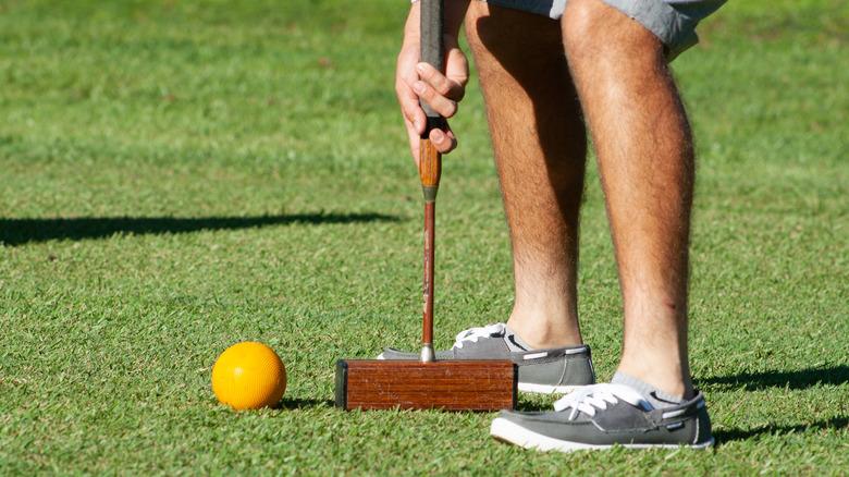 person hitting a croquet ball