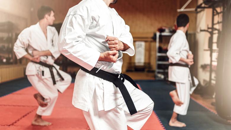 Martial artists practicing in studio