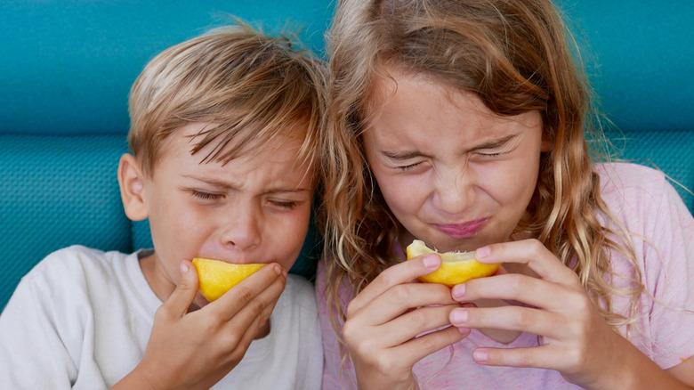 Kids eating lemons